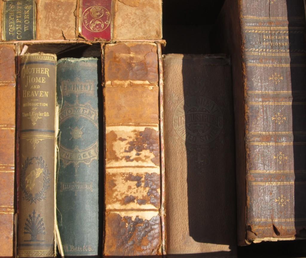 100yroldbook2
